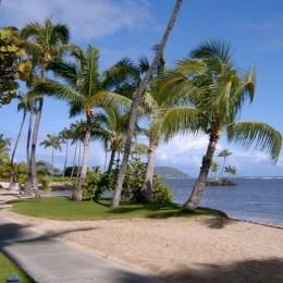 Wedding Location Review: Waialae Beach Park