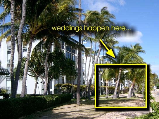 waialae3-1 Determining the Right Location for Your Hawaii Wedding
