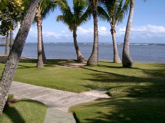 waialae4 Wedding Location Review: Waialae Beach Park